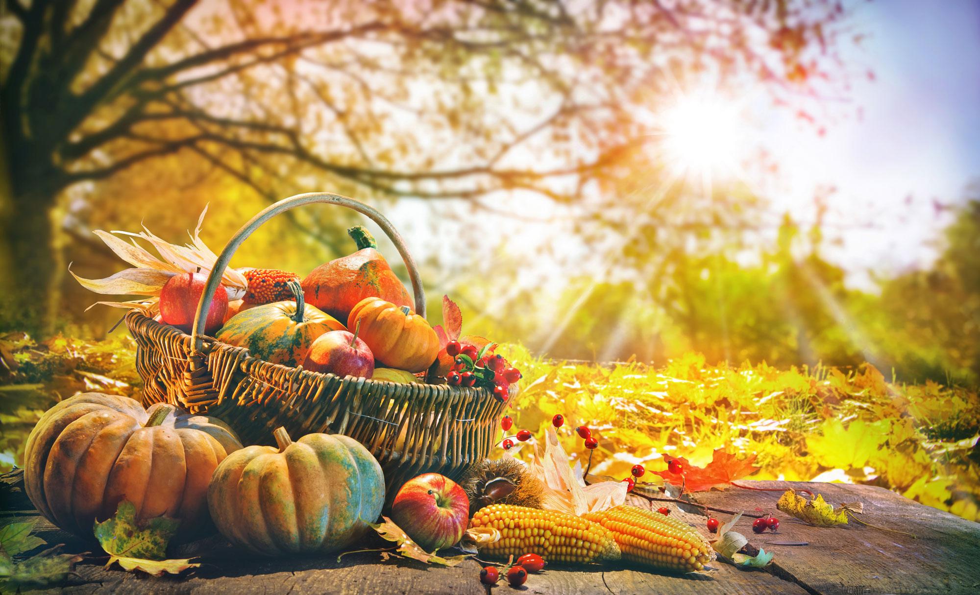 November Farm to Table Dinner